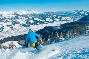 © Eisend Stefan / Kitzbüheler Alpen