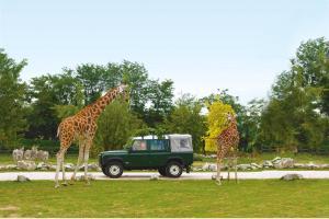 «Parco Natura Viva»
