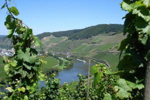 Mosel-Veloweg - von Trier nach Koblenz