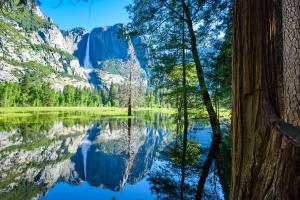 Die Nationalparks Kaliforniens entdecken - Wanderreise