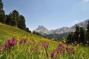 Brixen in Südtirol