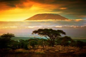 Kenya - safari & vacanza balneare