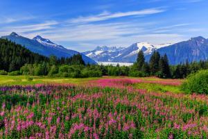 Alaska - Rundreise