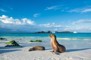 Équateur & Îles Galápagos - circuit