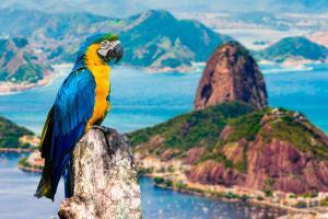 Sud America - tour