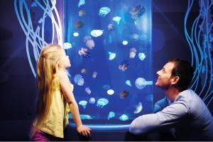 Gardaland Park und Gardaland SEA LIFE Aquarium