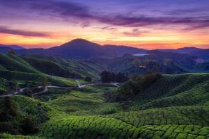 Singapur & Malaysia - Rundreise & Baden