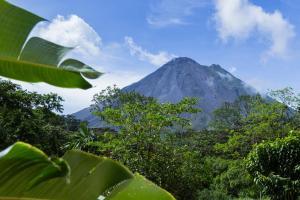 Costa Rica & Panama - Rundreise & Motorsegelkreuzfahrt