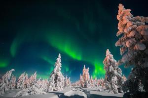 Capodanno sotto il cielo polare - tour