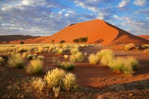 Namibia - tour
