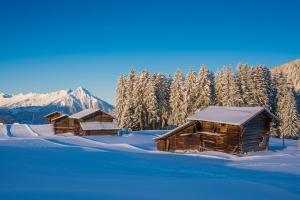 Winterlandschaft mit Bergpanorama, Wald und urigen Holzhütten in Beatenberg, Schweiz ALDI SUISSE TOURS