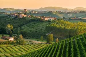Tour durch Monferrato