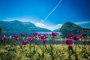 Lugano ALDI SUISSE TOURS