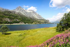 Engadin - ALDI SUISSE TOURS