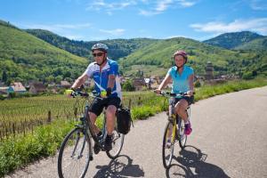 Alsazia - tour in bicicletta