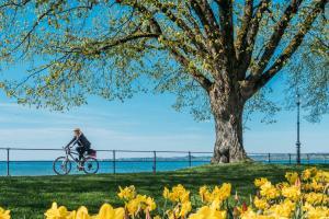 Radfahren am Bodensee ALDI SUISSE TOURS