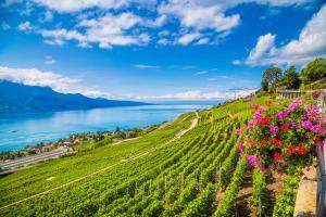 Velofahren im Genferseegebiet ALDI SUISSE TOURS
