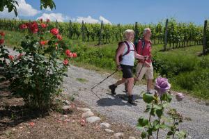 Genusswandern im Piemont - Wanderreise