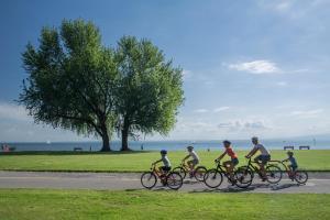 Rhein-Route - Velotour