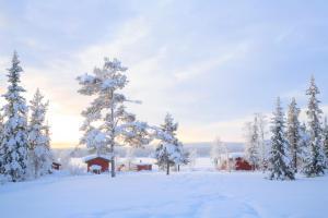 «Nordlichtzauber am Polarkreis» - Lappland